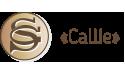 Кожевенно-производственное предприятие «СаШе»